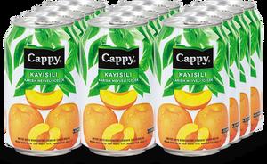 Cappy Kayısı Kutu 330 ml Meyve Suyu 12 Adet